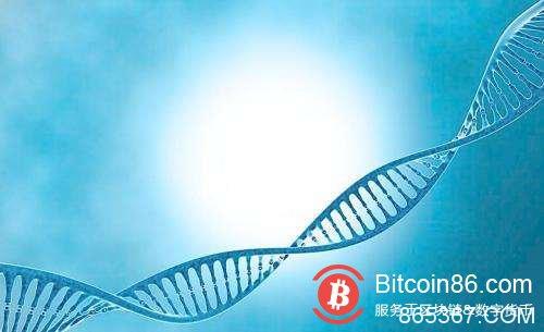 IDC预测:到2022年 1.5亿人将拥有基于区块链的数字身份